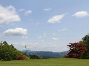 ニューアドニスゴルフクラブ1