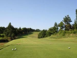 アイランドゴルフパーク岐阜中央1