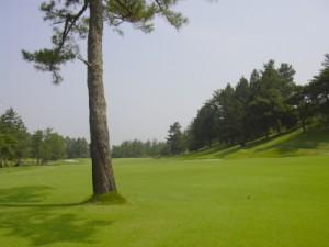 日本ラインゴルフ倶楽部3