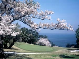 川奈ホテルゴルフコース 大島コース3