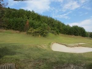 スプリングフィールドゴルフクラブ3